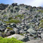 CIMG2454 羅臼岳頂上を見上げる