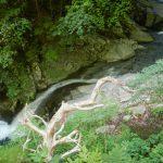 26_トイ状の滝
