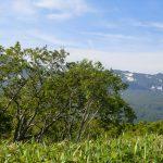 CIMG2344_英嶺山から見た知床連山_右端が硫黄山
