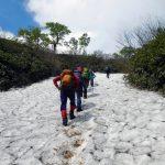 雪渓(歩30分)