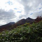 中の大倉尾根から見た旭岳