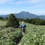 氷見二千石原を歩くメンバーと石鎚山