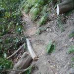 以前はここに大木が横たわっていて、東側急斜面の足場の悪いところをくぐり抜ける必要のあったところです。奇麗に切り払われて、危険が無くなりました。