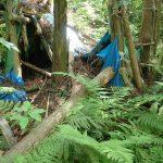 6. 青いテント小屋。10年以上前人が居住していたようです。