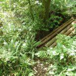 33. 右方向へこの橋を渡って行くと森戸川林道終点方面です。