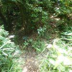 18. 南尾根側から丸塚尾根の入り口(写真右側)を見たところです。