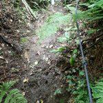 22. 路面は湿っていて滑りやすい上に急傾斜なので、張ってあるロープが凄く頼りになります。