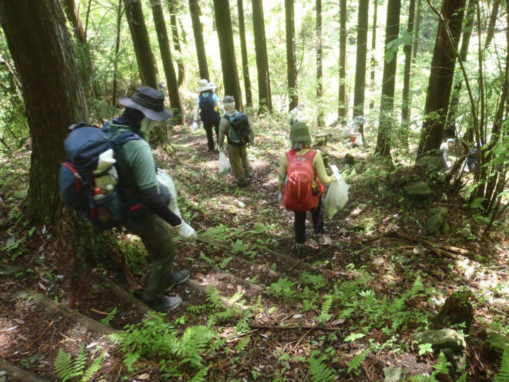 ⑤コース 表丹沢県民の森