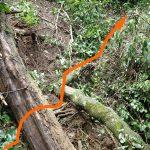 17e その先の倒木を踏み越えると、その先に登山路が見える。