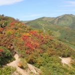 紅葉と飯豊山。
